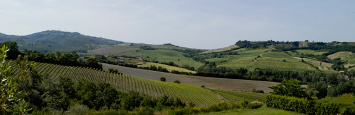0000037289_Umbria_Header_770x250