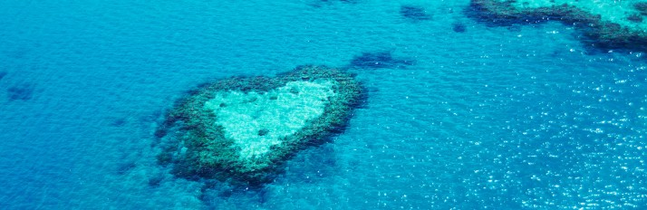 Hayman-Heart-Reef_web