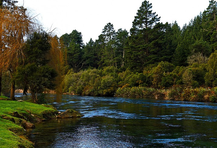 Mr & Mrs Smith - Waikato River