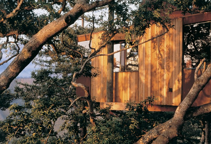 Mr & Mrs Smith - Tree House Exterior