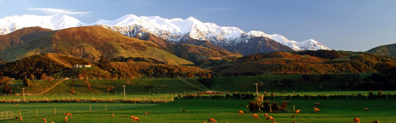 Hapuku Lodge & Tree Houses hotel - Kaikoura - New Zealand
