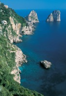 0000010155_capri-WGOBF-P