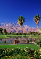 0000010196_palm-springs-WGOBF-P