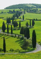 tuscany_web_01