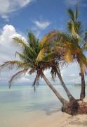 Cebu & Mactan Island